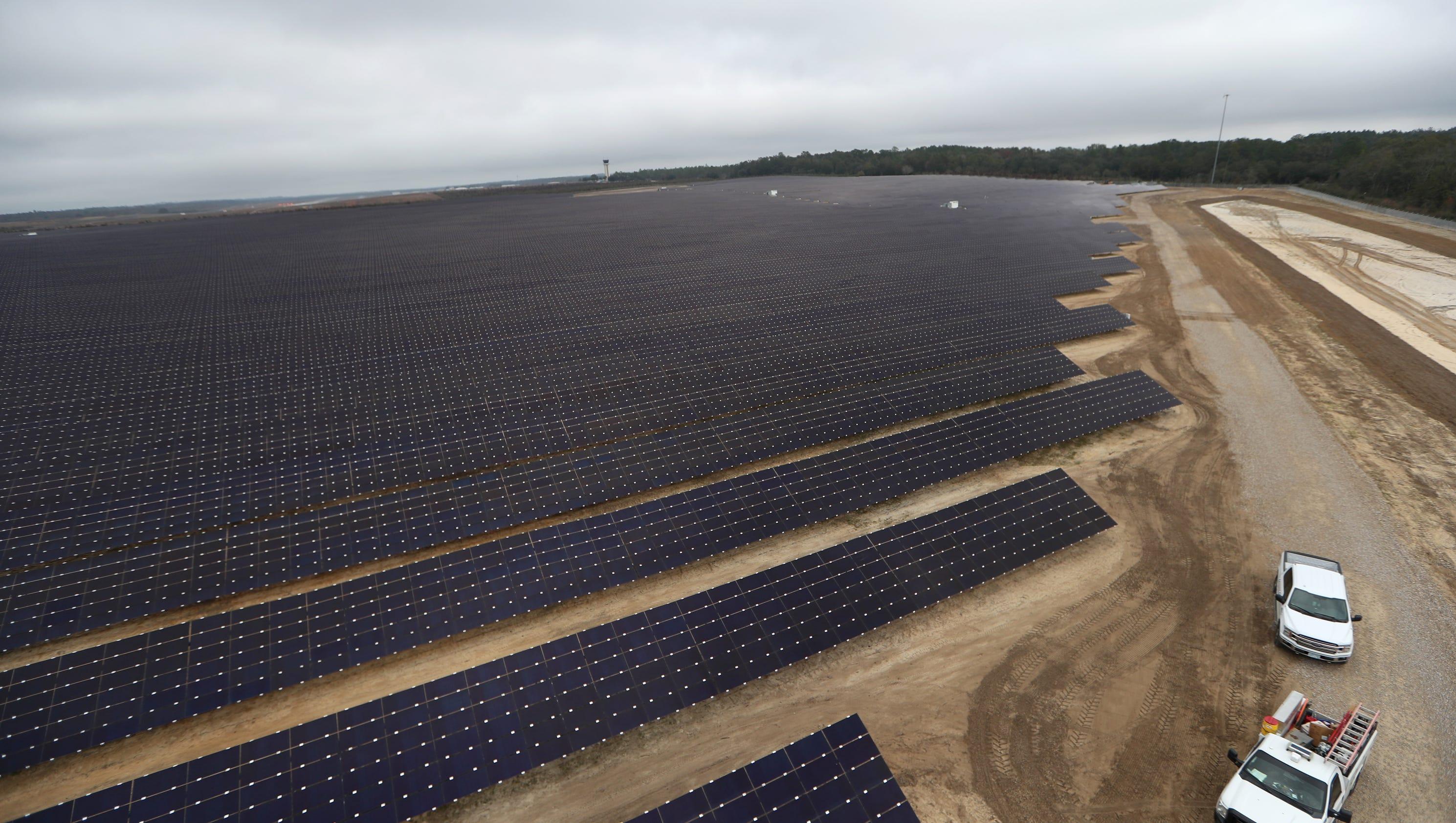 Solar Farm 10 Tallahassees Turns Jan