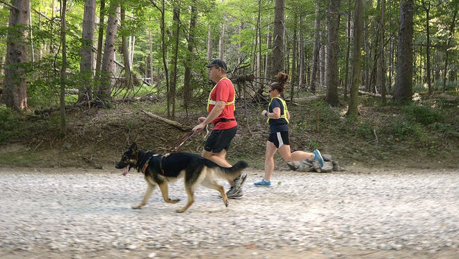 Richard Hunter with his running guide dog, Klinger, and the dog's trainer, Jolene Holllster, doing a training run at Downing Park in Yorktown on Thursday.