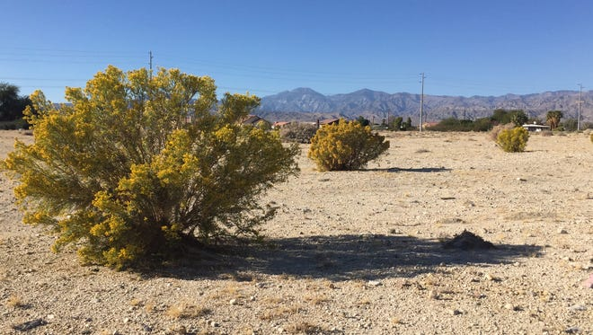 Vacant land at the corner of Two Bunch Palms Trail and Little Morongo Road in Desert Hot Springs. The city has approved three massive marijuana cultivation facilities for this area.