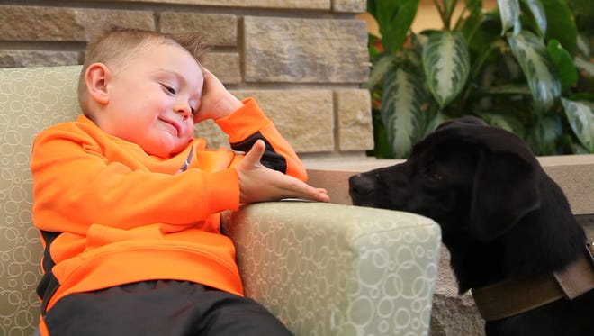 Tristan Sommerfeld, 5, of Ankeny meets Bosco the K-9 for the first time.