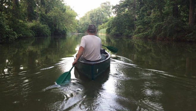 Tom Kashmer, research coordinator with the Sandusky County Park District, paddles down Green Creek with daylight remaining at the start of a moon-lit canoe trip he led through the Sandusky County Park District.