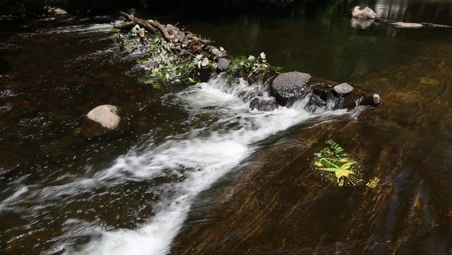 The Ramapo River in Hillburn July 21, 2016. Declining water flows in the river have been compensated for by water releases from Potake Lake in Sloatsburg.