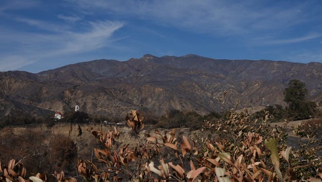 Hillsides along Highway 150 outside Santa Paula are ash-covered in some places due to the Thomas Fire, as were the hills behind Thomas Aquinas College on Monday. The wildfire that started south of the campus Dec. 4 became the largest in modern California history.