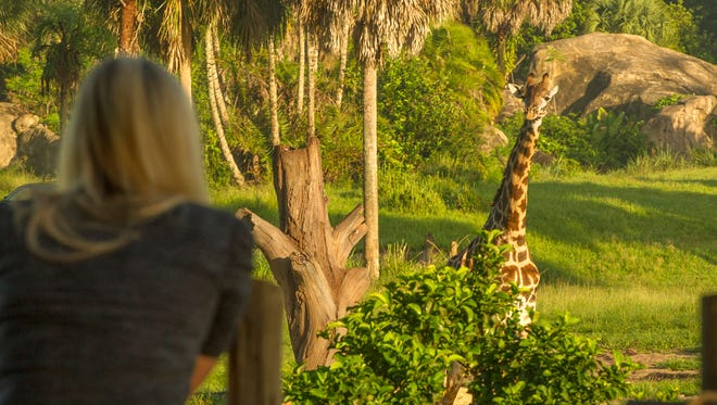 Disney's Animal Kingdom: One-day ticket prices vary, but for two days, prices start at $104.50 per day. Visitors per year: 12.5 million. See your favorite animals in action, and enjoy exciting theme park rides at this Disney theme park in Orlando. Catch the lineup of entertainment that includes a carnival experience and a wildlife party.