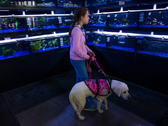 Haley Manns and her service dog Mavis wander through Pet Food Center in Clarksville. Part of the initial bonding process includes going into public places together for the first time.