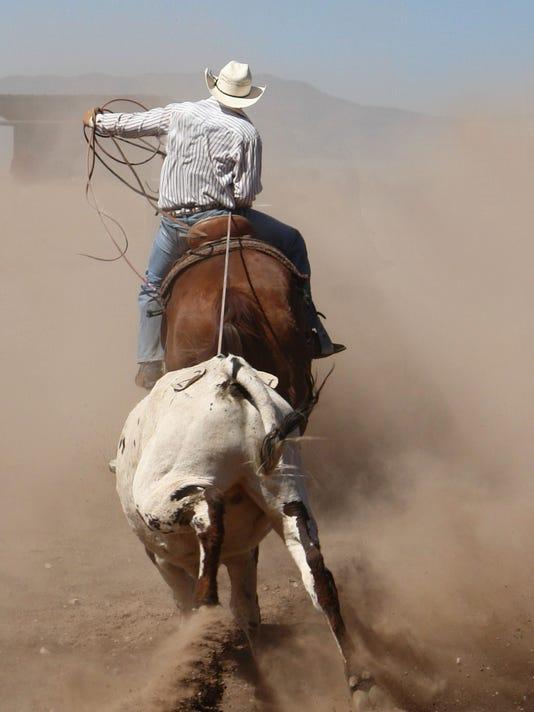 cowboy-dust.jpg