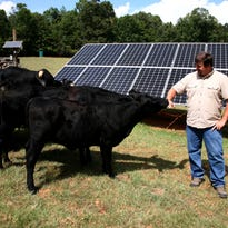 Pickens entrepreneur lives off grid, makes a living teaching others how