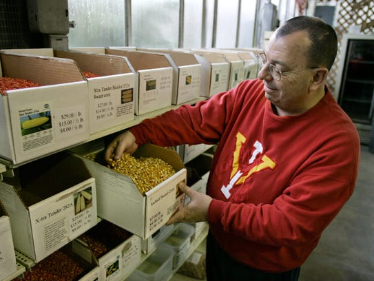 Dave Huth takes a look at bulk Iochief sweet corn seeds