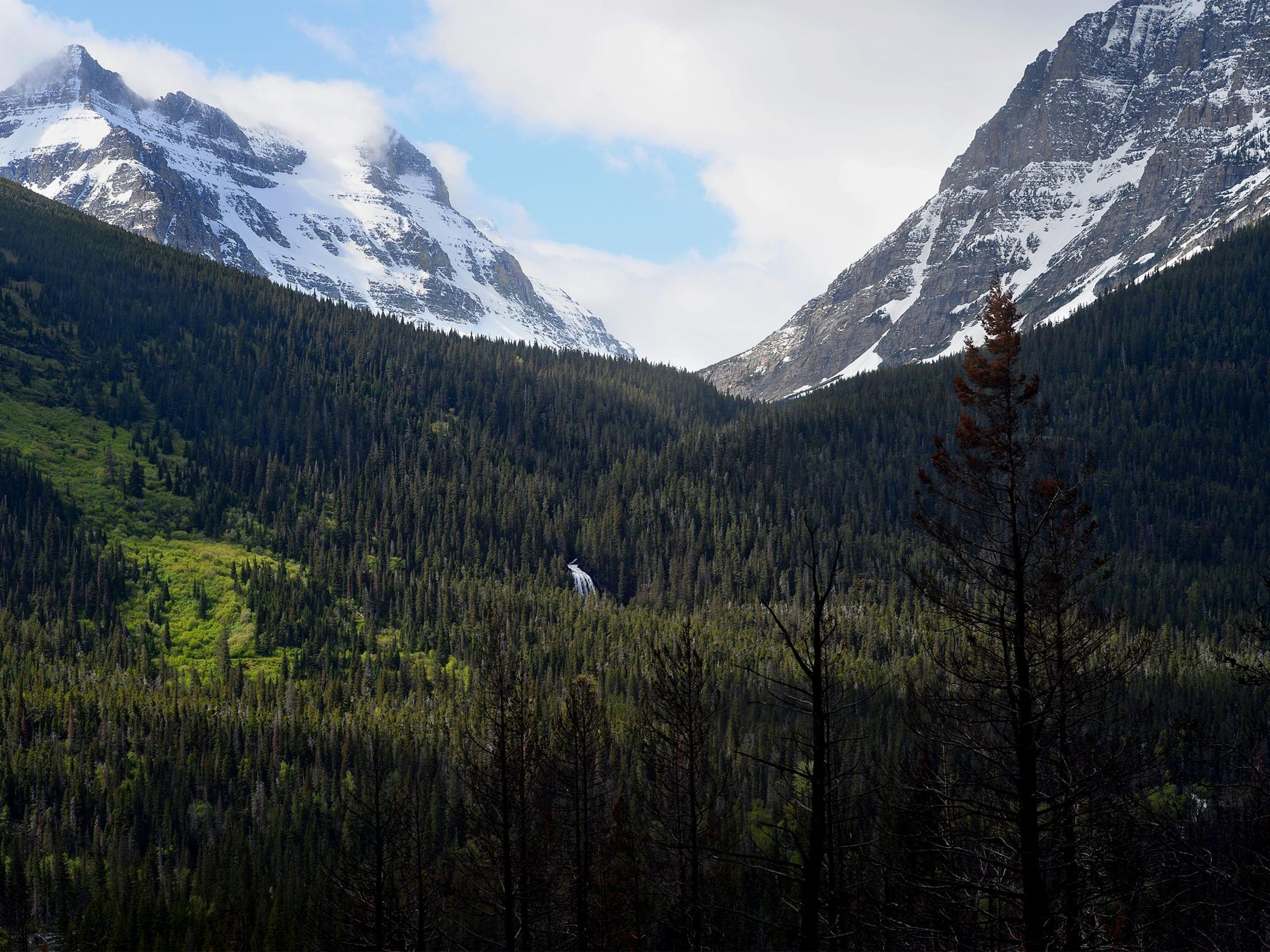 From Going-to-the-Sun Road in Glacier National Park