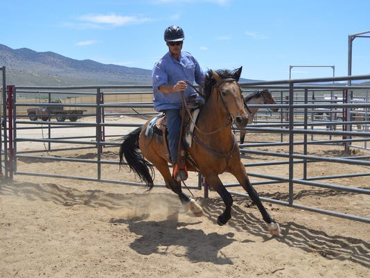 Inmate trained horse