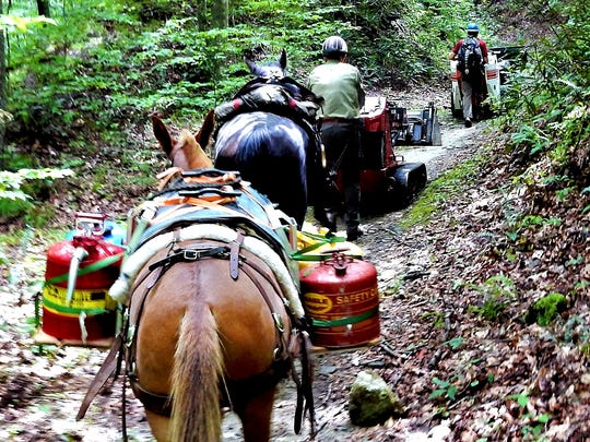 The Backcountry Horsemen will help volunteers at Pisgah Pride Day May 5 by packing in heavy trail work equipment.