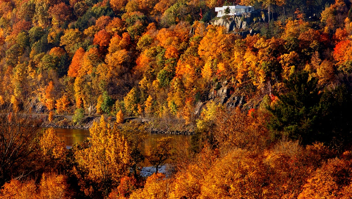 FOLIAGE REPORT Yellows Reds Appear In Southern Tier