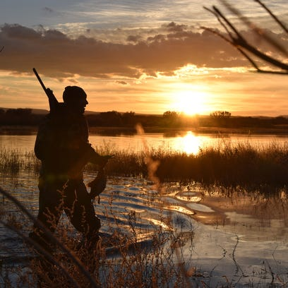 Karl Malcolm carries a wigeon duck back to the blind