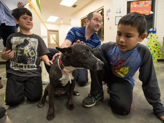 Salem, Illinois, residents (from left) Preston Camp, 7; Tommy Camp; and Nathan Camp, 9, spend time with their new dog Gracie during an adoption drive at Memphis Animal Services Friday.