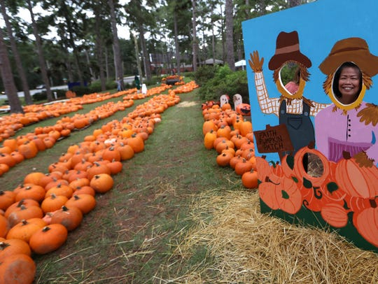 A pumpkin patch at Faith Presbetarian on Wednesday,