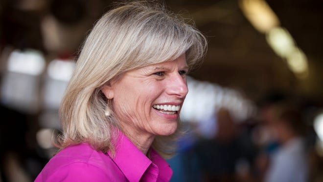 Wisconsin Democratic gubernatorial candidate Mary Burke.