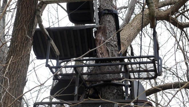 A general view of a deer stand. Lower Anderson County has been a big buck magnet recently.