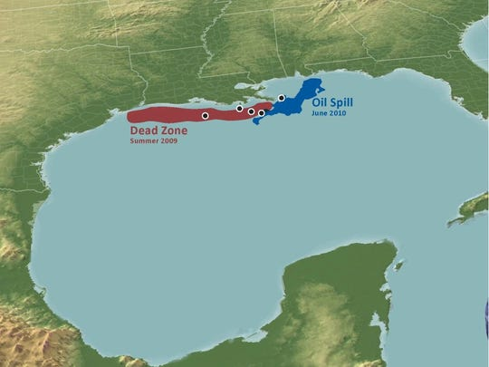 PHOTO COURTESY UTMSI This image shows the locations of the Dead Zone and the 2010 BP oil spill area in the Gulf of Mexico.