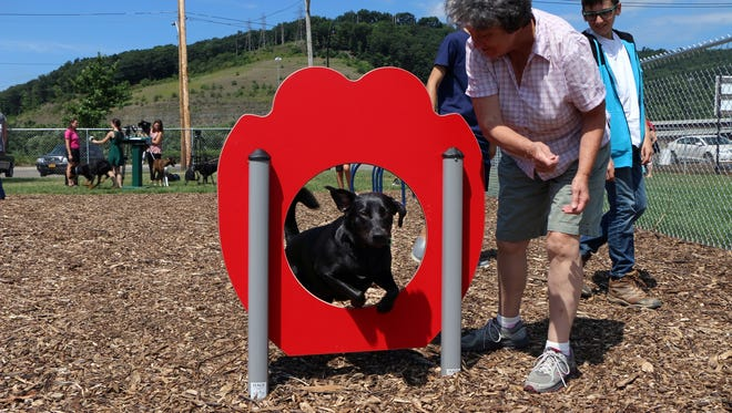 A dog checks out some of the new amenities Friday at the Cheri Lindsey Park's Bark Park on Binghamton's North Side.