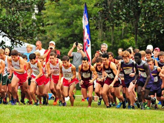 Leon and Chiles push off the start at the Alligator Lake Invitational, which will also host the region meet in a month. The defending state champion Timberwolves won the meet by 28 points over the Lions.
