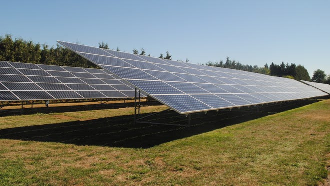 """Recently installed solar panels in the """"backyard"""" of the NW Hazelnut Company processing plant."""