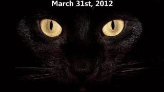 blackcat-day