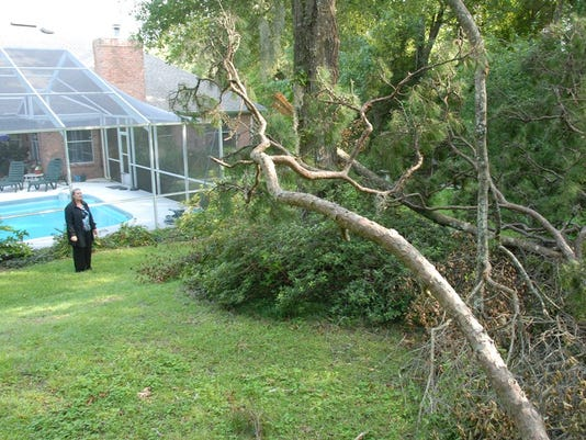 636633545239013662-Landscape-Ready-for-Hurricane-Season-2018a.jpg