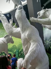 Walk by a Hermit Ground Sloth at the Worlds Collide exhibit at BioMuseo in Panama City.