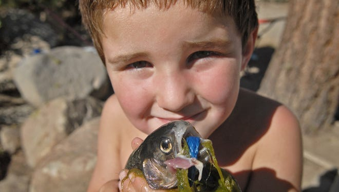 Zachary Davis, 6, of Reno, shows off one of three fish he caught at Marilyn's pond at Galena Creek Regional Park Sunday, Sept. 27, 2009.  Davis placed first in his division in A Big Fish Contest during the Reno Galena Fest in Sept., 2009.