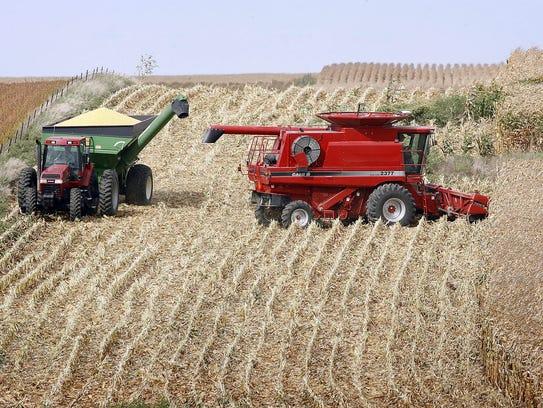 Corn harvest in southwest Minnesota. (Dick Carlson/inertia/