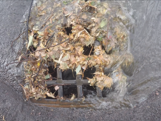 Leafy debris rushes down a storm drain at Battery and