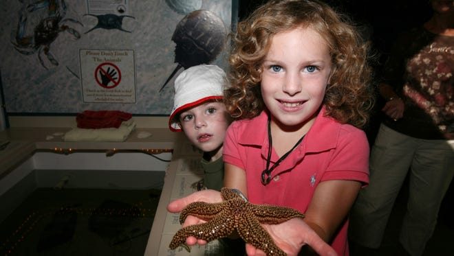 Kids visiting the Wetlands Institute in Stone Harbor get hands on experiences with starfish and other sea creatures.