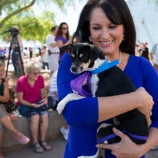 The Gilbert 23 donated funds raised after the deaths at the Green Acre boarding facility to save 61 dogs from being euthanized at the Phoenix Maricopa County Animal Care and Control August 23, 2014.Valerie Collins, of Mesa, parades one of the fostered dogs that was saved. Collins lost her dog in the tragedy.