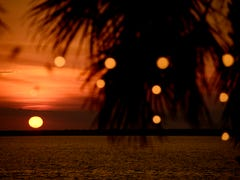 PNJ Sunset Lovers July 16