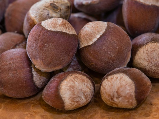 American hazelnut is tasty to humans and a  variety of critters.
