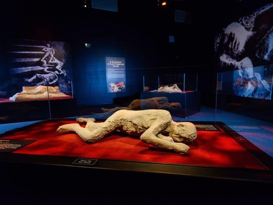 """""""Pompeii: The Exhibition"""" comes to Arizona Science"""