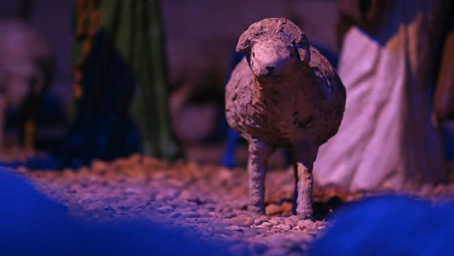 One of the concrete sheep in the Algona Nativity Scene on display, Tuesday, Dec. 20, 2016, at the Kossuth County Fairgrounds in Algona. The scene was created by German POWs held in Algona in the 1940s. The half life-size figures are made of concrete and plaster, some with wire or wood frames.