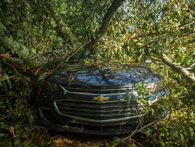 A parked car sits sandwiched in between two fallen