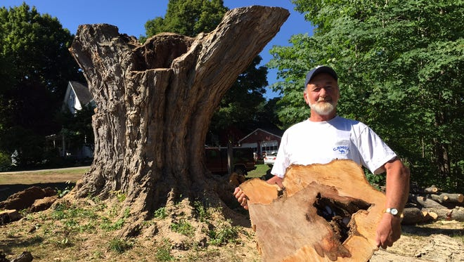 Paul Carr, 65, of Ontario, Wayne County, was one of many passers-by who took pieces of a felled sugar maple tree that had been declared the largest in the state.