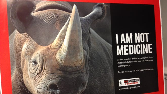 Federal authorities are charging two South African men with conducting illegal rhino hunts in the African country.
