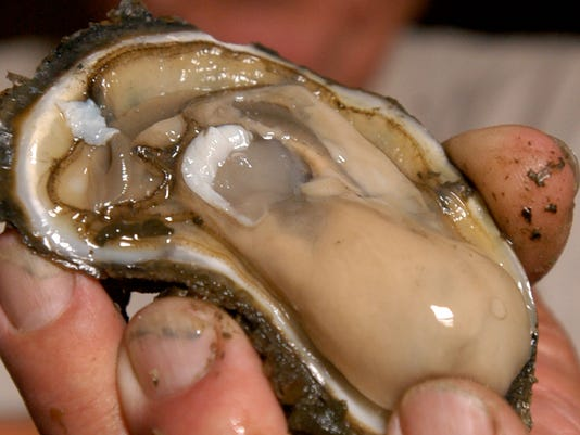 -bs-raw oyster-0213.jpg_20110111.jpg