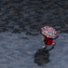 A record-breaking daily maximum rainfall of 2.55 inches was set at GSP Airport Saturday.