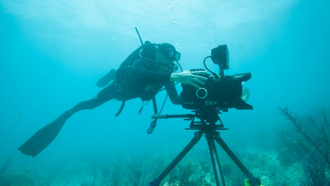 Cameraman Tom Fitz documents the assault on Florida''s coral reef system,– the  fifth largest in the world.