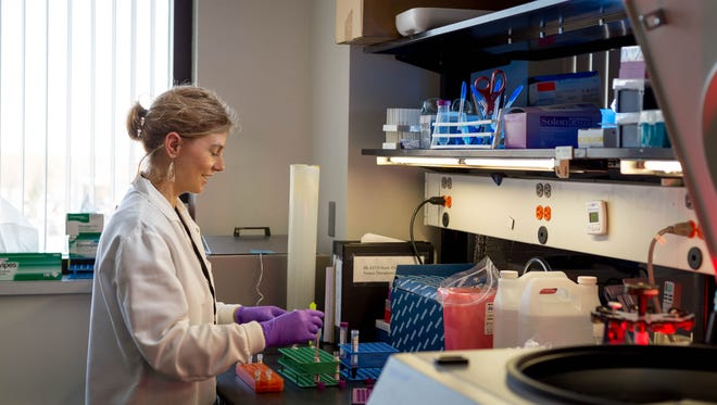 Jennifer Anderson, senior research associate, prepares blood samples that will be processed for DNA extraction and genetics testing on May 3, 2017 in the laboratory of the Marshfield Clinic Research Institute.