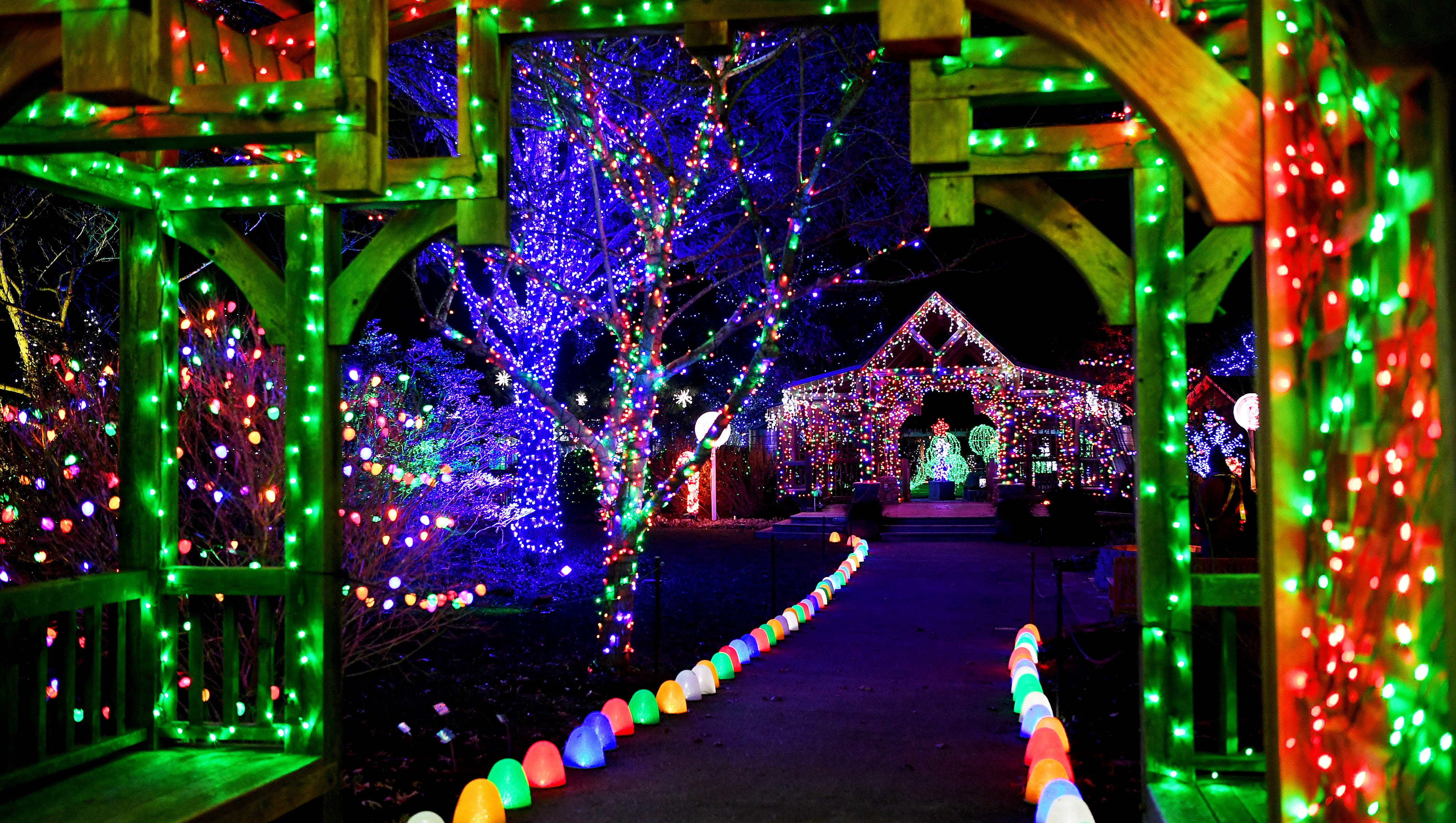 Your Guide to Christmas Lights, Festivals & Shows
