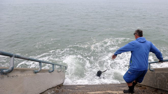 In this Star file photo, Rory Galbarith, of Ventura, plays with his dog during king tides at the Ventura Promenade.