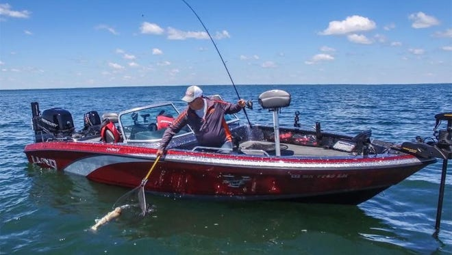 A variety of gamefish, including walleye, gravitate to offshore feeding grounds in the summer.
