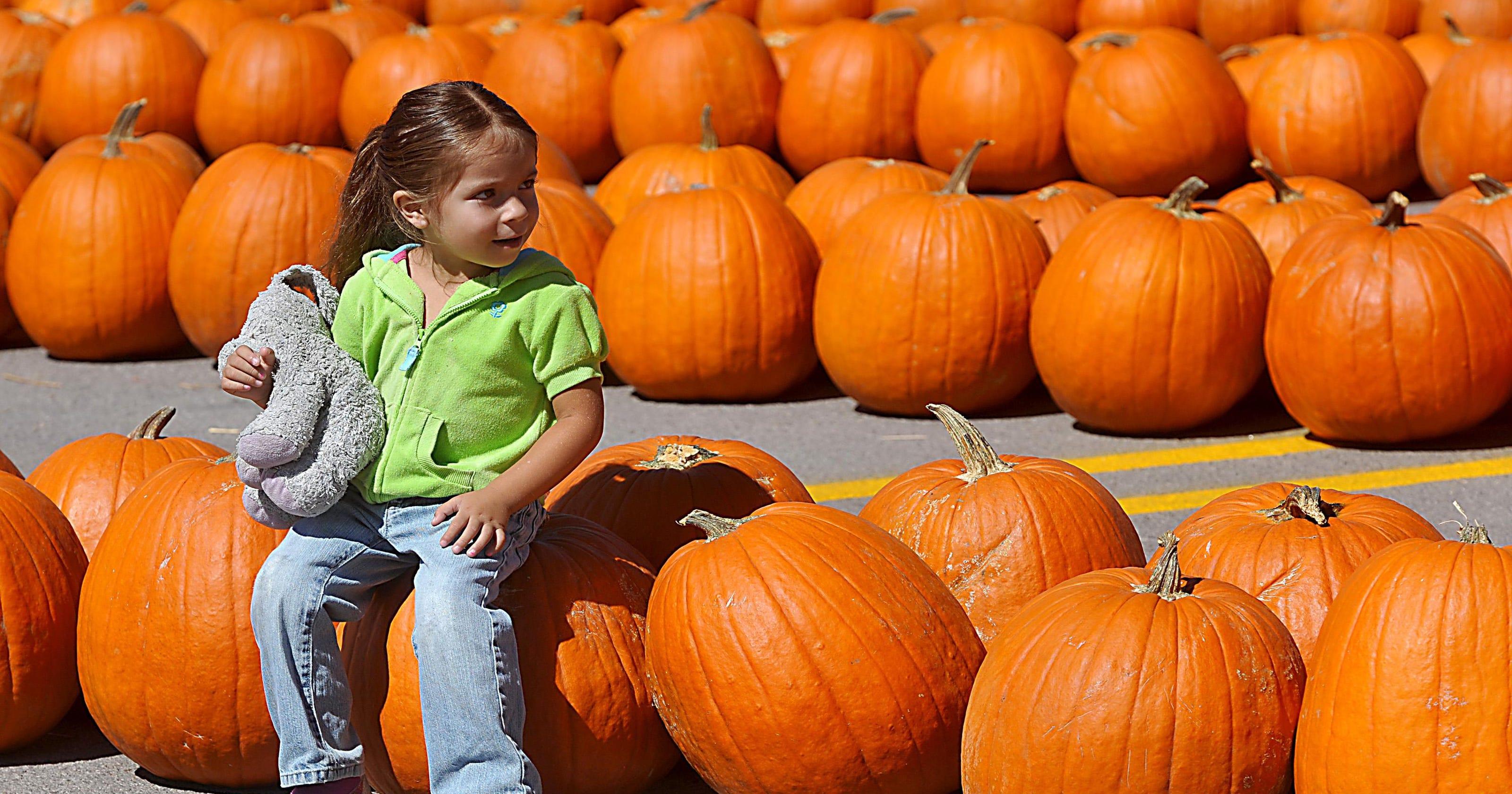 halloween wars hayride of horror watch online