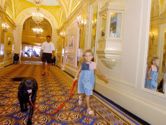AP TRAVEL TRIP HOTEL DOG