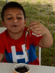 """JJ Jiminez, 8, works on hooking a worm. The Collier County Junior Deputies League hosted the tenth annual """"Kids Love Fishing"""" event Saturday morning Feb. 18, around Camp Discovery at the Florida Sports Park."""